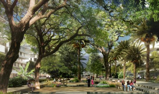 Avenue des Universités © EPA - DEVILLERS & ASSOCIES